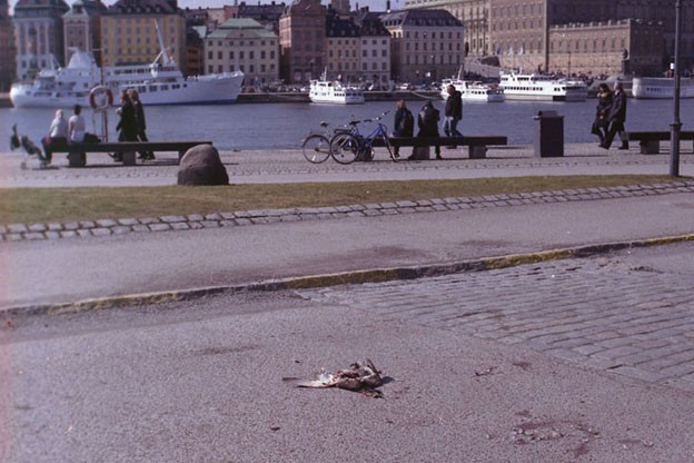 http://bethlau.com/files/gimgs/th-105_stockholm032-624.jpg